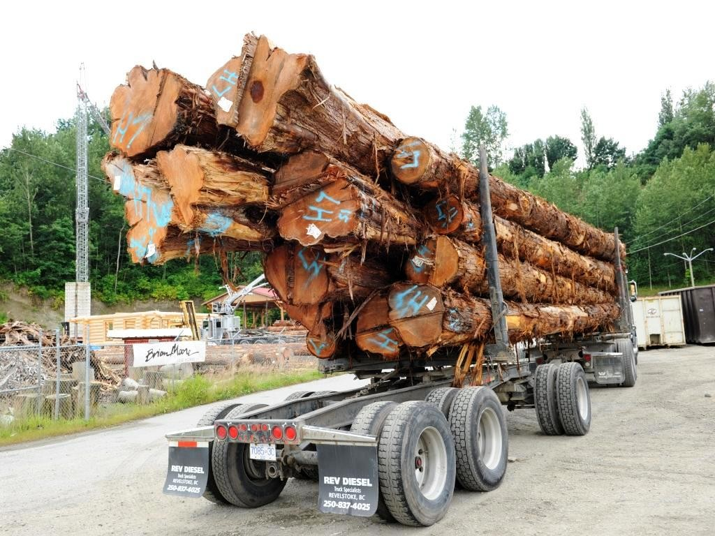 trailer with logs of western red cedar